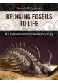 Palaeontology - Earth Sciences - Earth Sciences, Geography - Non Fiction - Books 18