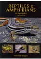 Reptiles & Amphibians - Wild Animals - Natural History, Country Life - Sport & Leisure  - Non Fiction - Books 2