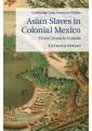 Slavery & Abolition of Slavery - Specific events & topics - History - Non Fiction - Books 8